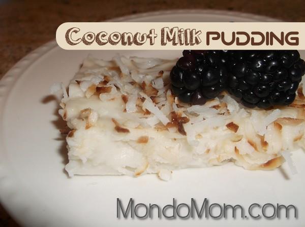 Coconut milk pudding recipe