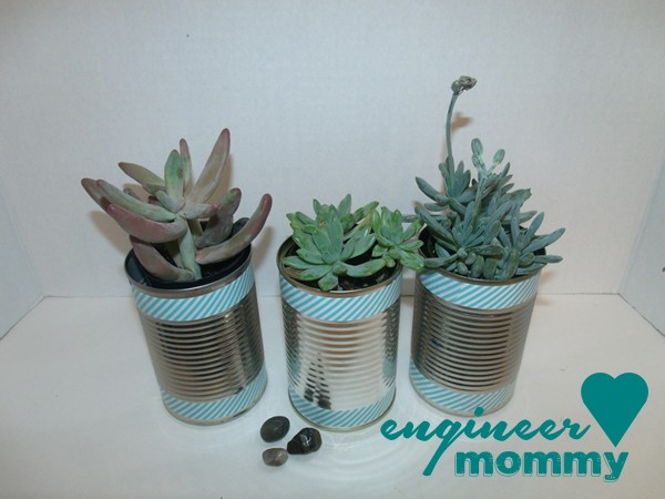 DIY Tin Can Planters