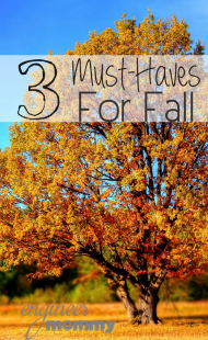 3 Must-Haves for Fall