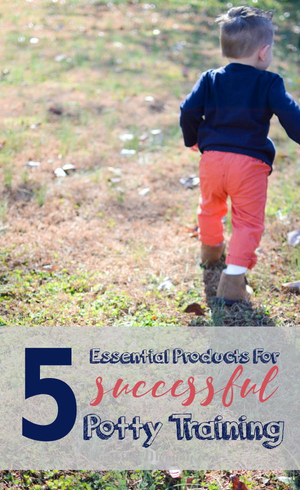 5 Essential Products for Successful Potty Training