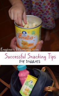 Successful Snacking Tips for Toddlers