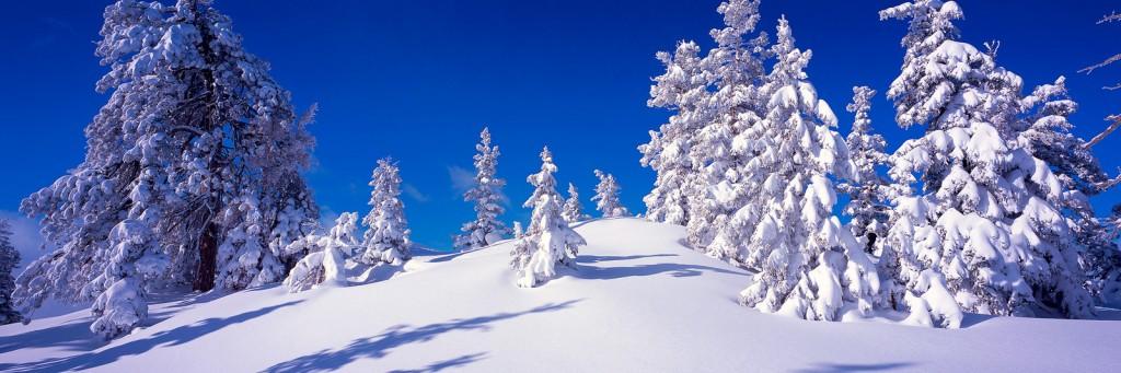 cedar-mountain-cp-ut-cm-1013-pan-001-5x15-kcot-x3