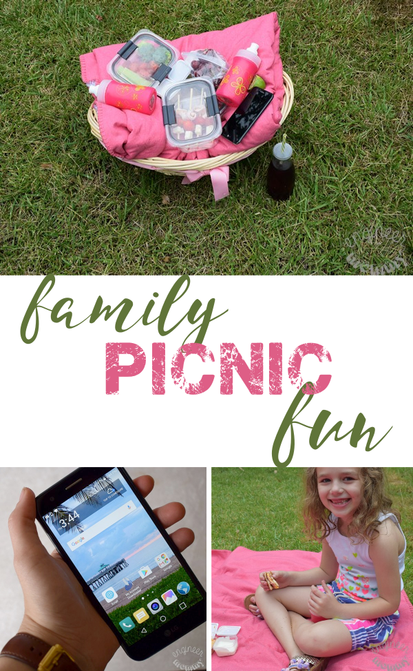 family-picnic-fun