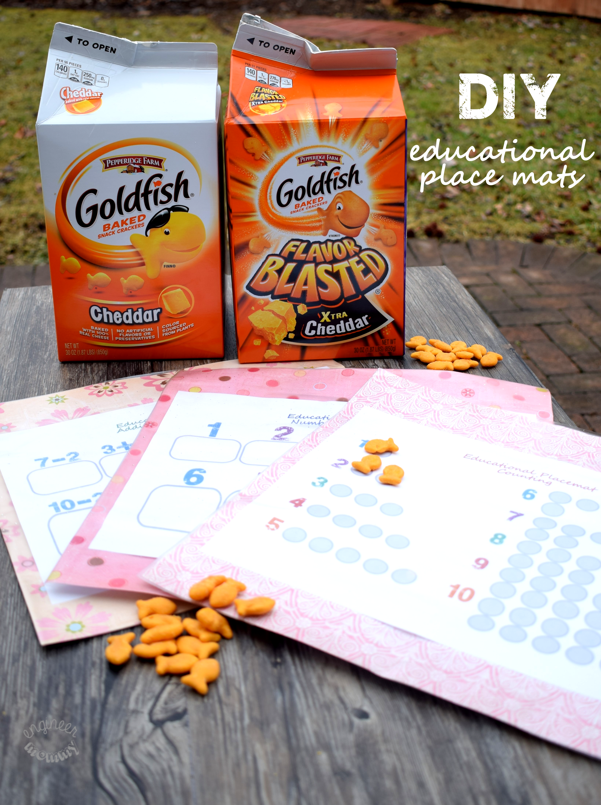 DIY Educational Place Mats