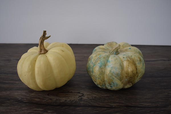 DIY Marbled Pumpkins