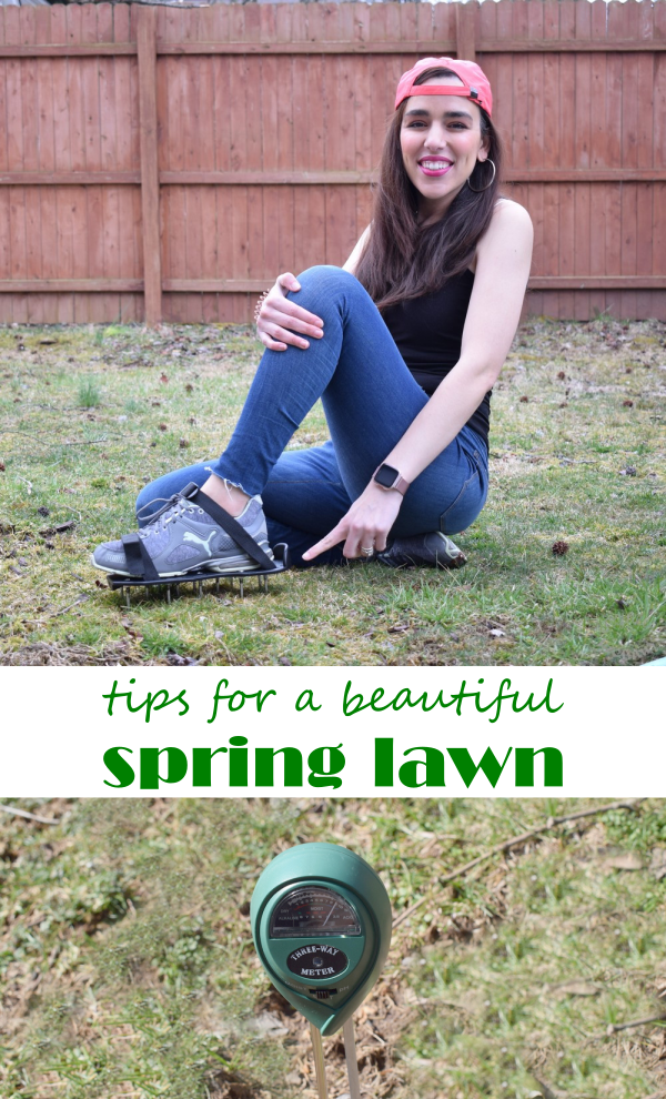 7 Tips for a Beautiful Spring Lawn