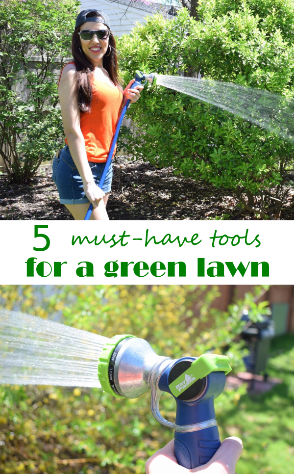 5 Must-Have Tools for a Green Lawn