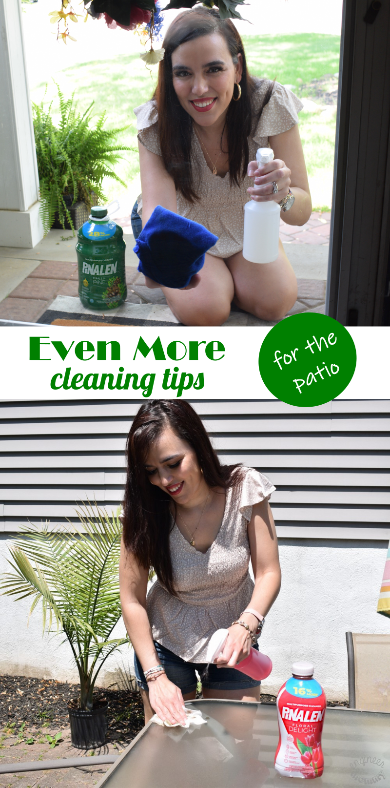 5 More Ways I'm Using PINALEN Multi-Purpose Cleaner This Summer